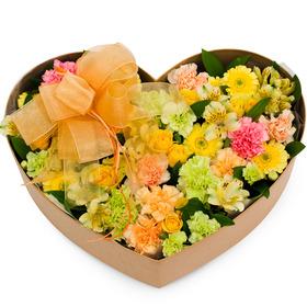 꽃박스 p211