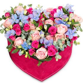 꽃상자 p511
