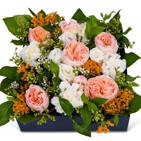 꽃상자 p3030